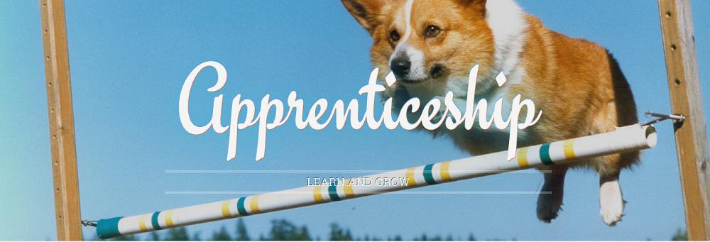 detroit-labs-apprenticeship