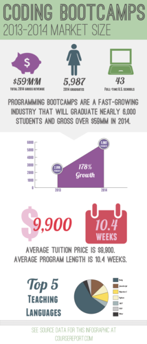 Programming Bootcamp Marketing Sizing Study Infographic