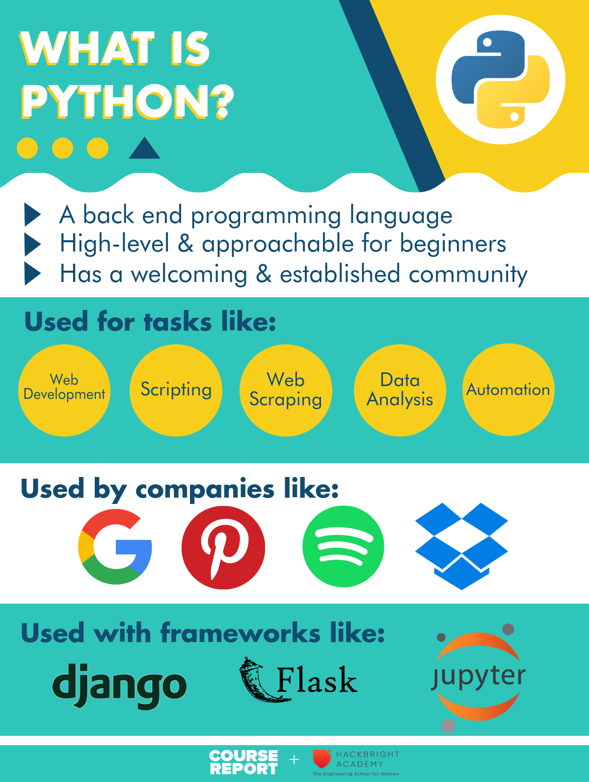 What is Python coding language infographic