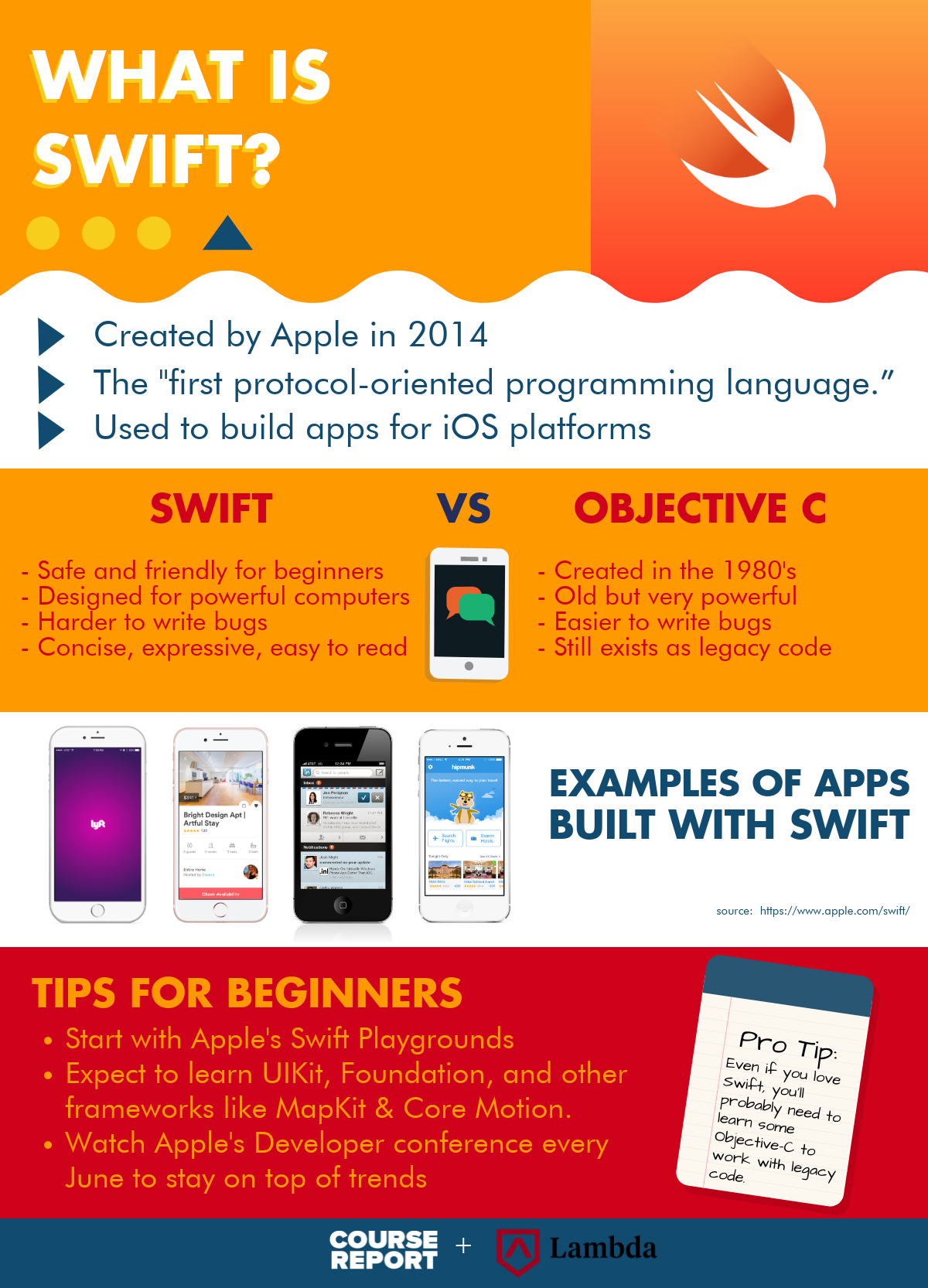 best-coding-language-for-beginners-infographic