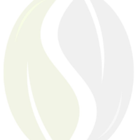 seedpaths-logo